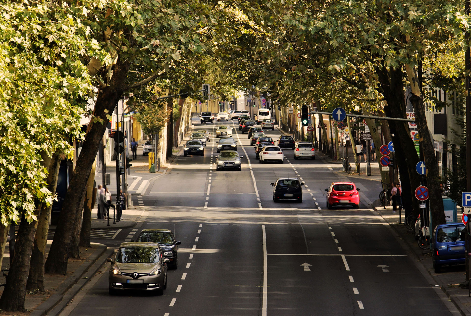 Незвичні правила дорожнього руху у різних країнах світу.